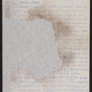 Niezidentyfikowana Sala do siostry Luty w getcie warszawskim o mężu i synu wysłanych do obozu pracy przymusowej i zbliżającej się zagładzie